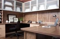 Contemporary Desk & Cabinets